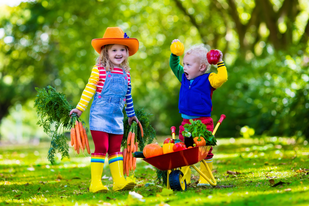 Photo of Easy Ways to Garden with Your Kids